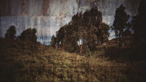 IPrimeiras impressões de uma paisagem